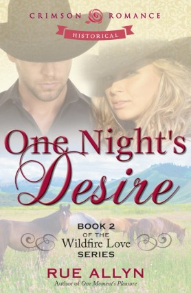 Cover Art for One Night's Desire
