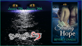Stealing Hope Book Tour Banner